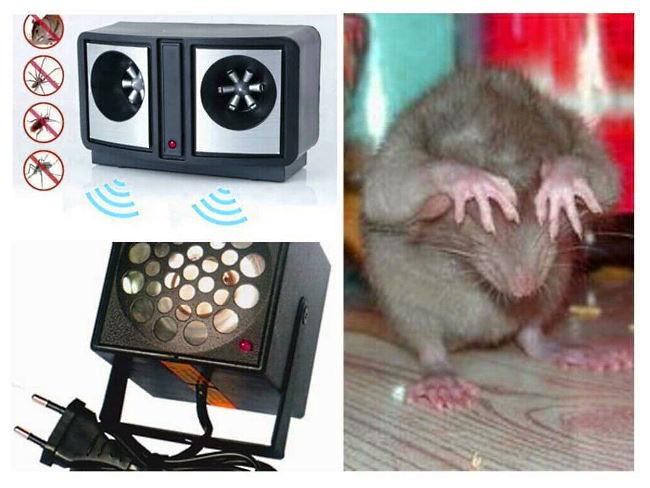 Используйте свет, чтобы сдерживать вторжение мышей в авто