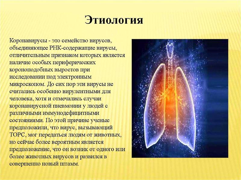 коронавирус этиология